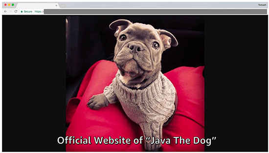 Figure 9: Java the Dog's homepage