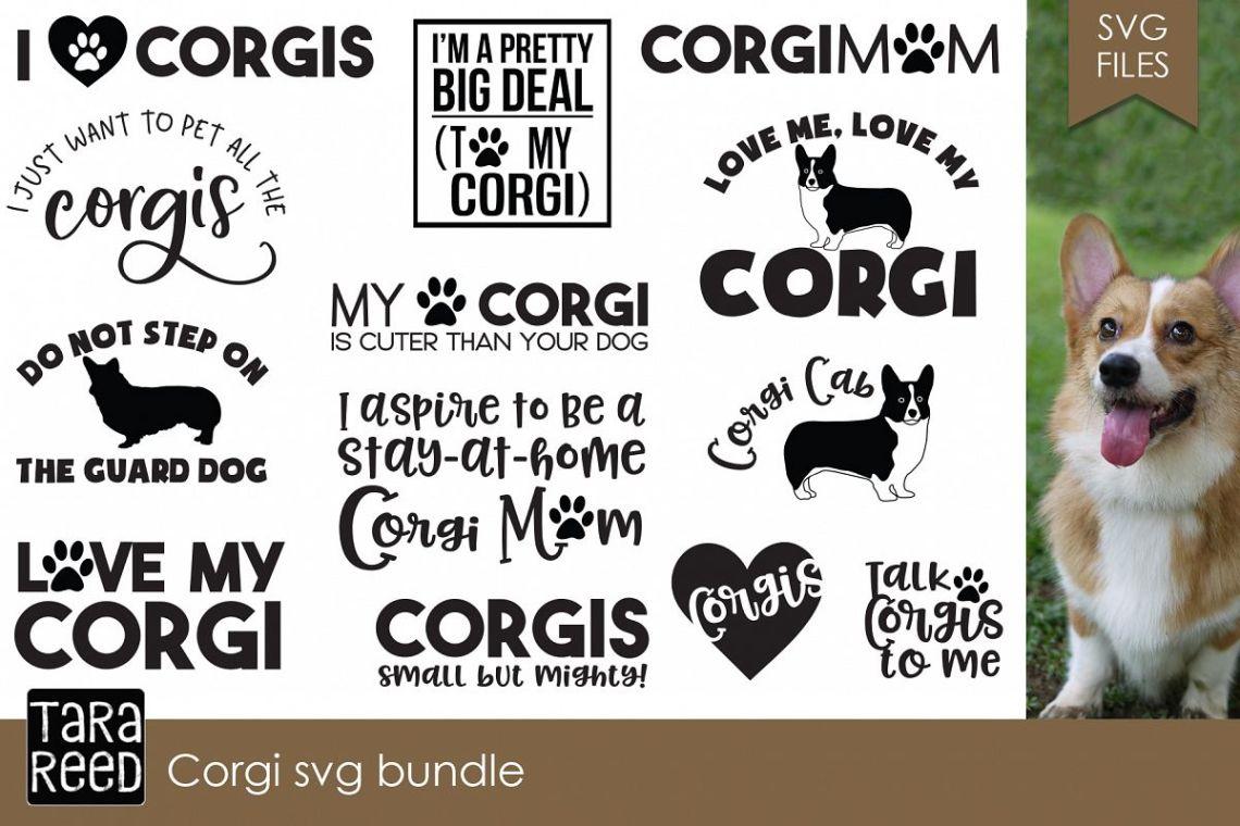 Download Corgi svg bundle by Tara Reed Designs | Design Bundles