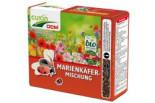 Cuxin DCM Blumensamen Marienkäfer-Mischung, Faltschachtel, 260 g