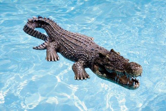 30-inch Floating Crocodile Decoy For Pool