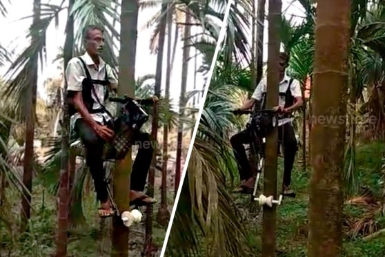India Farmer Creates Tree Bike