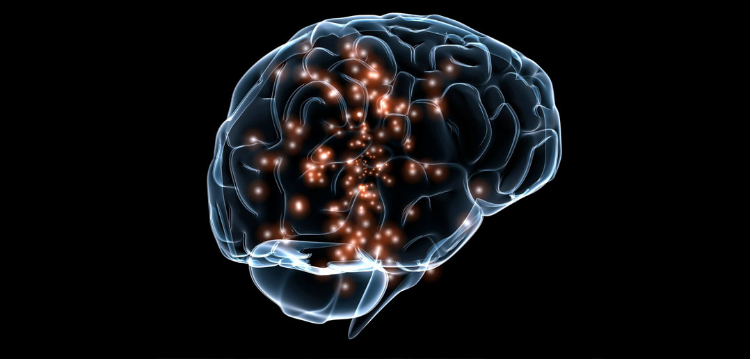 Image result for pic of the parts of the brain affected by spiritual experience