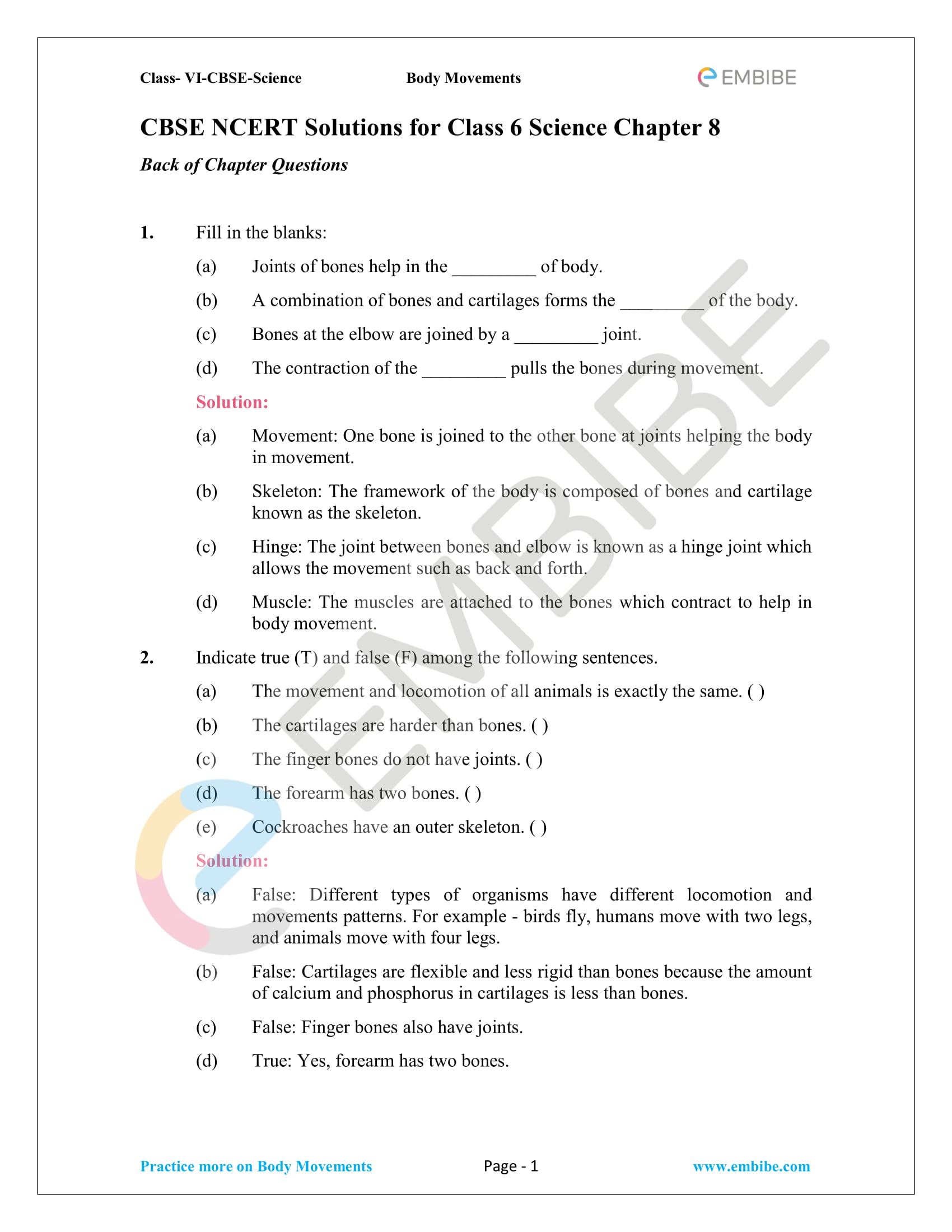 Classnotes Ncert Notes For Class 6 Science Chapter 1