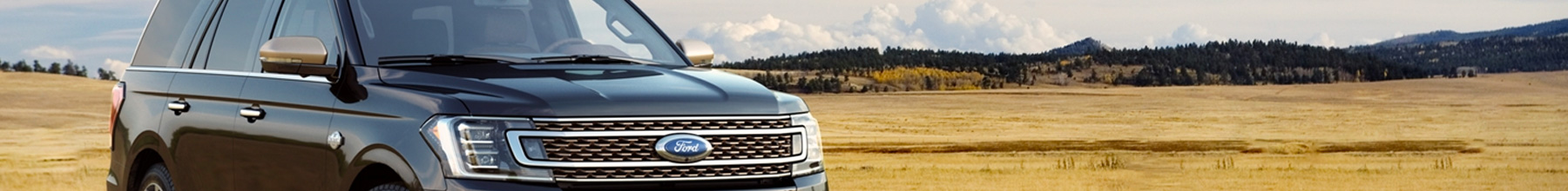 Ford Expedition 2020 Banner1