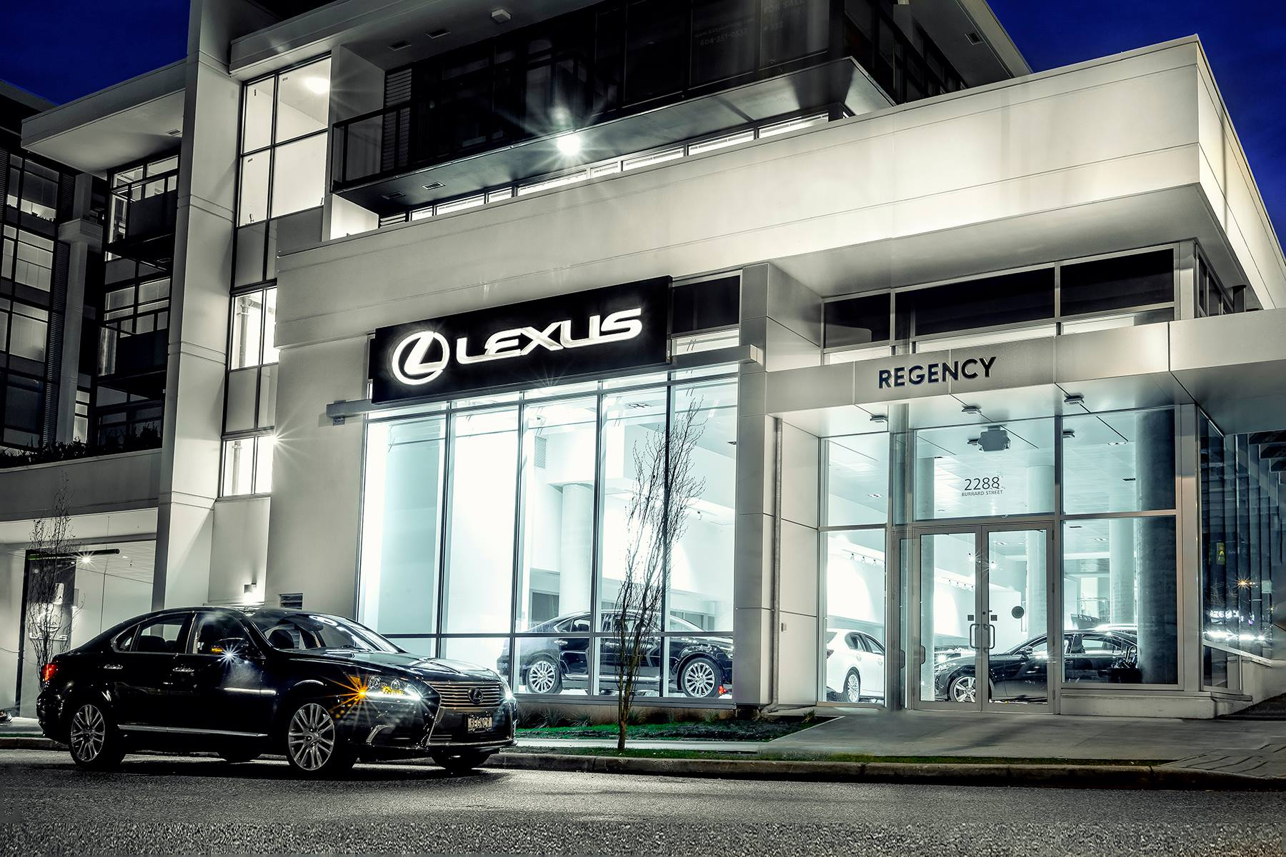 About Regency Lexus