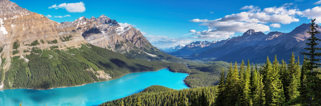 Panorama of Peyto Lake in Banff National Park