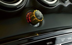 AMG Traction Control