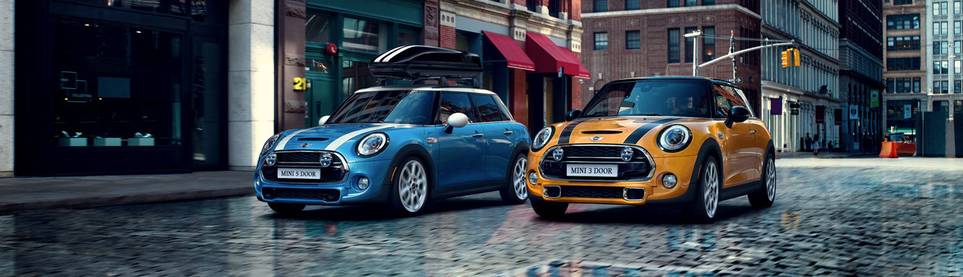 mini with a roof rack