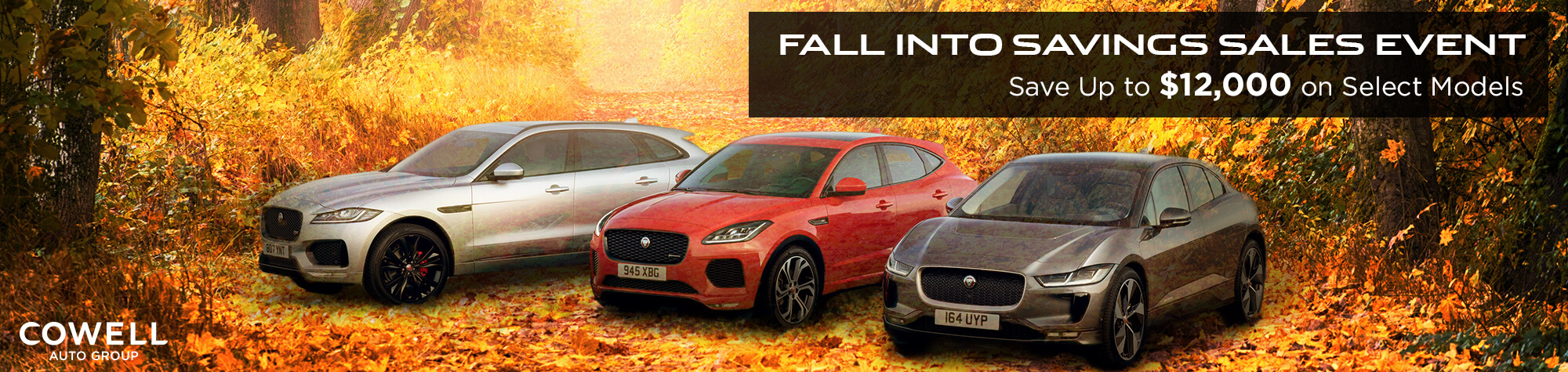 Fall into Savings Sales Event