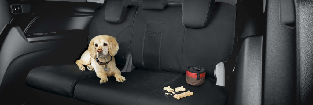 The interior of the Honda Odyssey with a dog on the seats