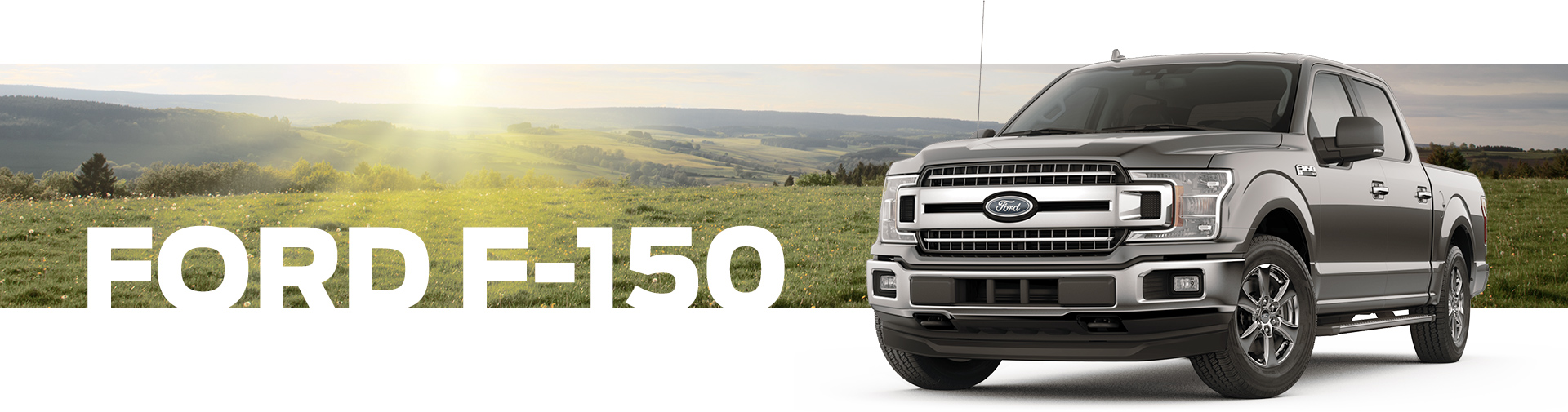 2019 The Ford F-150