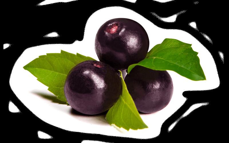Jeunesse Jeunesse Reserve 30 Packets Acai Berry