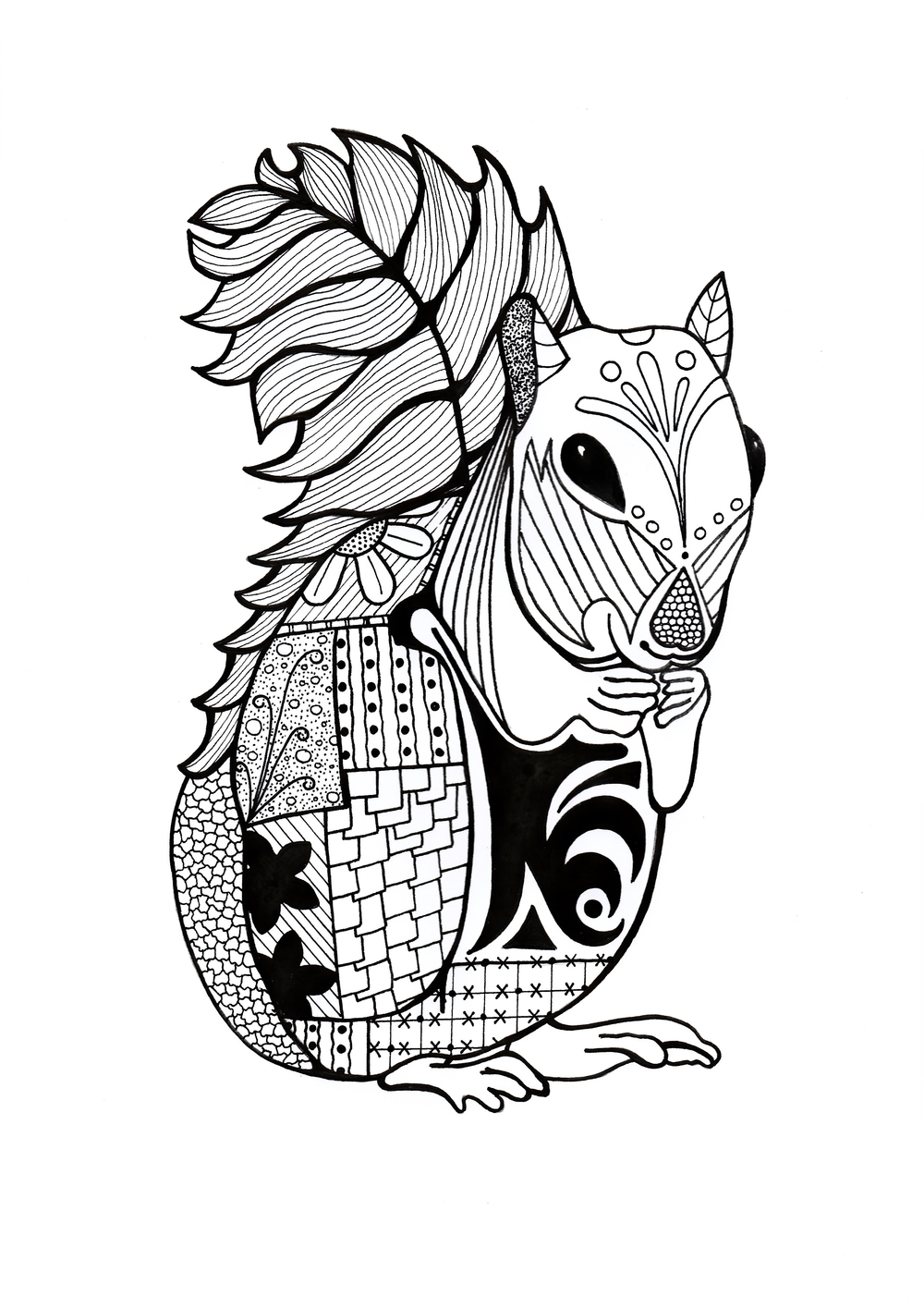 Intricate Squirrel Adult Coloring Page | FaveCrafts.com | printable colouring pages for adults animals