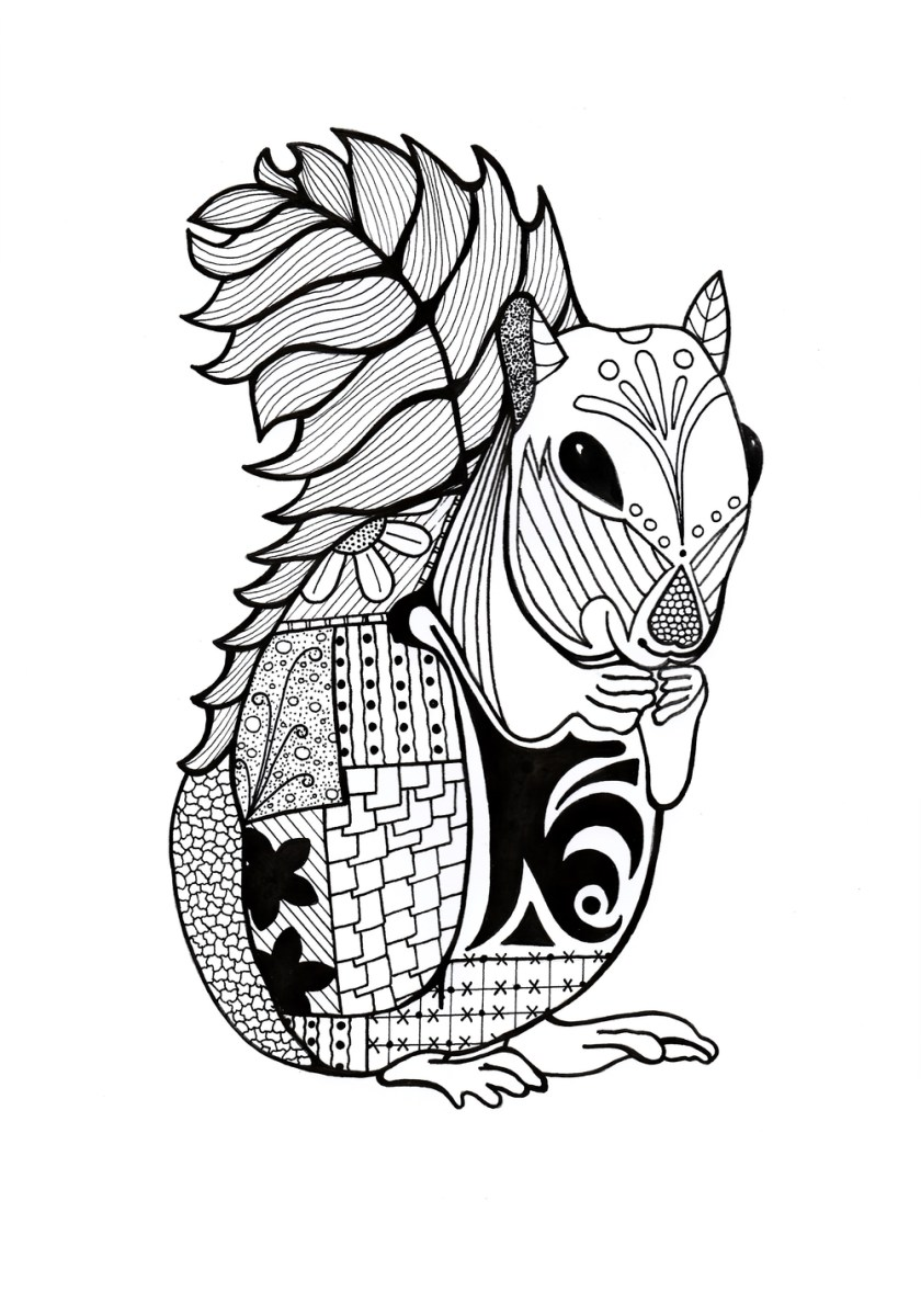 intricate squirrel adult coloring page  favecrafts