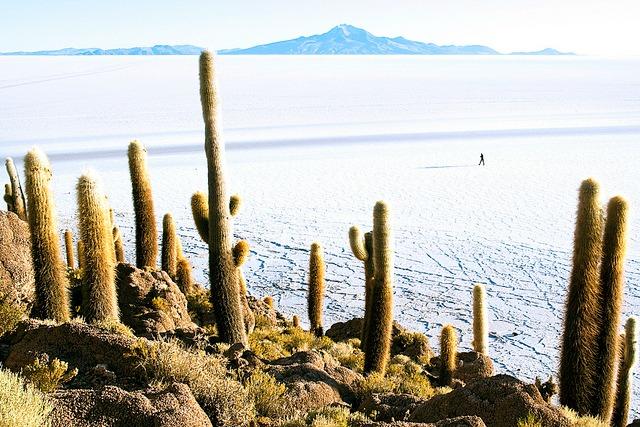 "Salar depuis Incahuasi, que voir en Bolivie© <a href=""https://www.flickr.com/photos/ru_boff/"" target=""_blank"">Dimitry B.</a>"