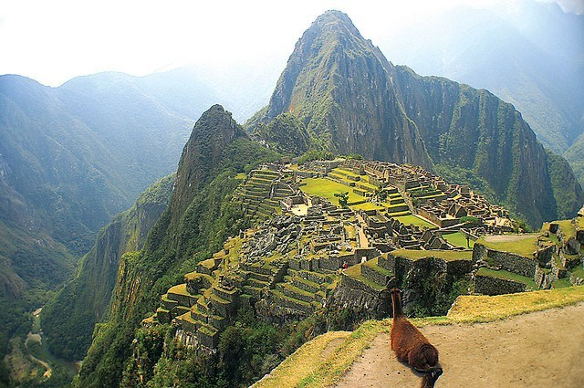 Vue du Machu Picchu Crédit photo à : Valdiney Pimenta https://www.flickr.com/photos/valdiney/
