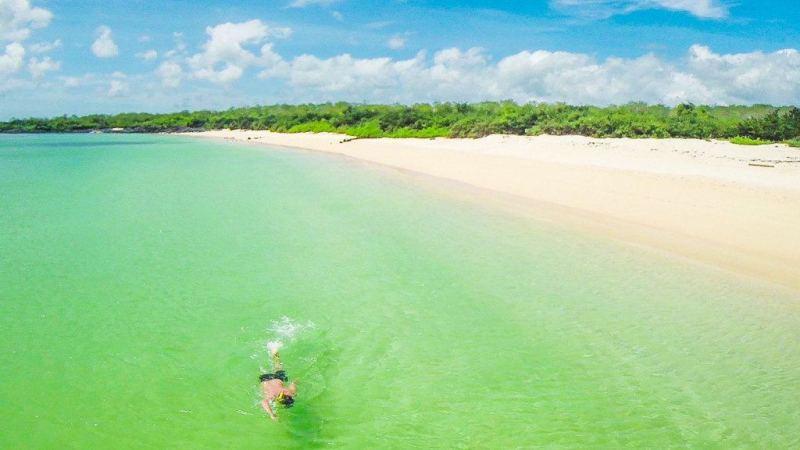 Nageur près d'une plage Galapagos