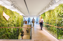 WELL hits global milestone for certified buildings
