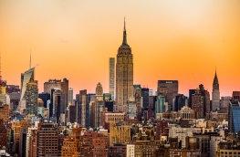 Meet the tenants of an urbanised future