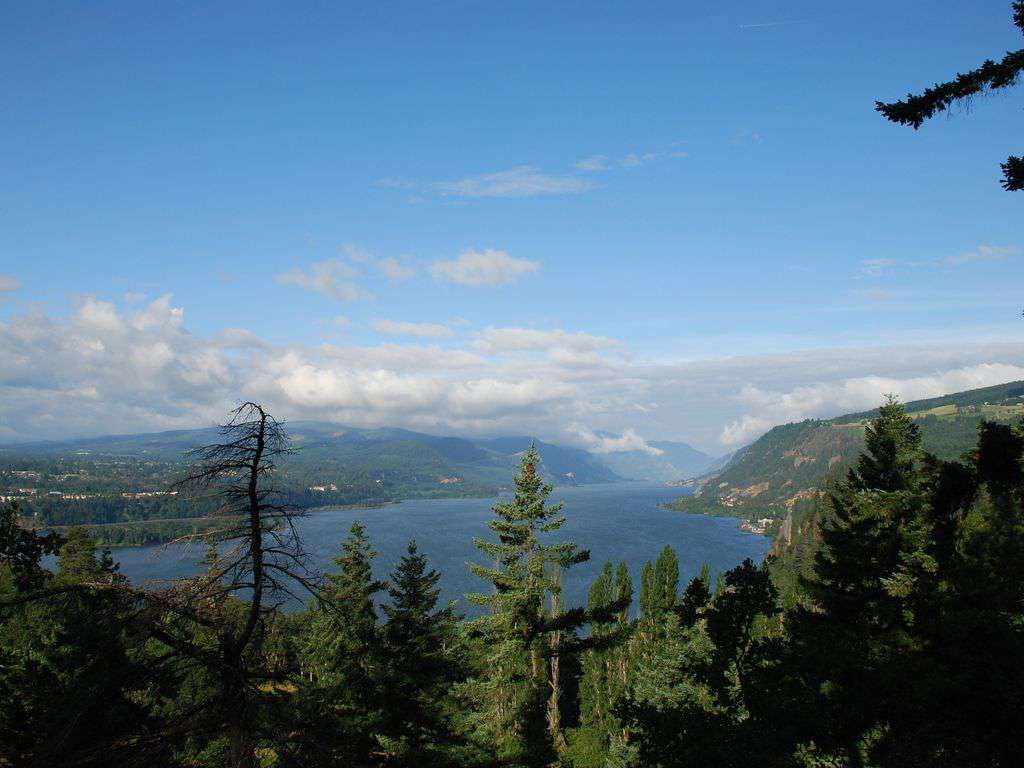 This is the breath taking Columbia Gorge. A one hr drive, that is a must see!