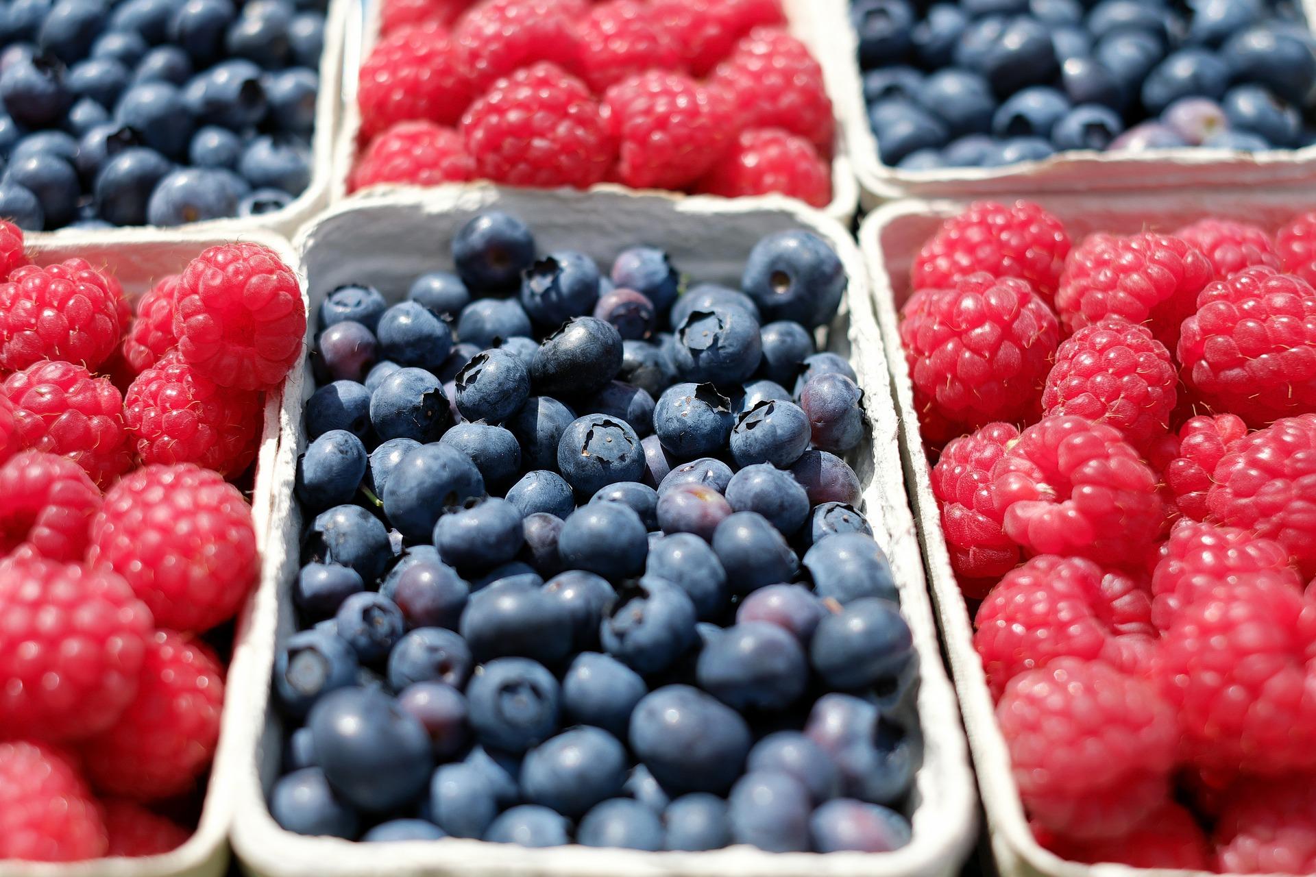 berries-1493905_1920jpg