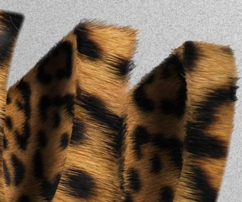 Tutorial html 575cb403 - Tutorial Letras Salvajes!