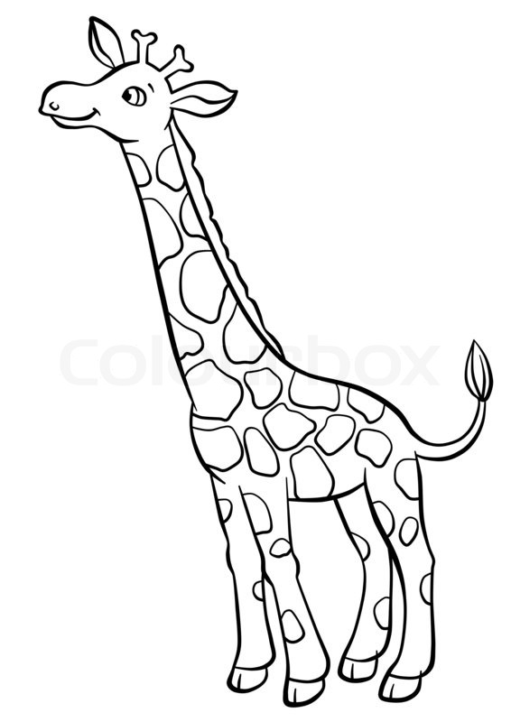 Coloring Giraffe Head Pages