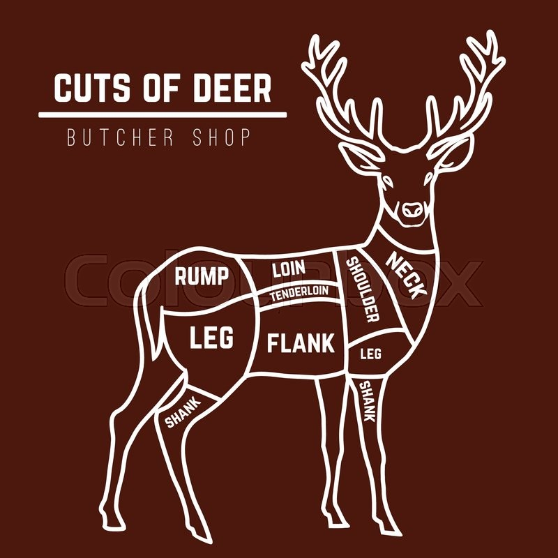 Meat Are Cuts Deer What