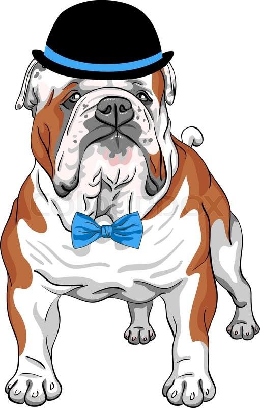 English Bulldog Cartoon