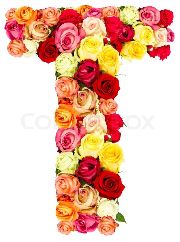 T Roses Flower Alphabet Isolated On White Stock Photo