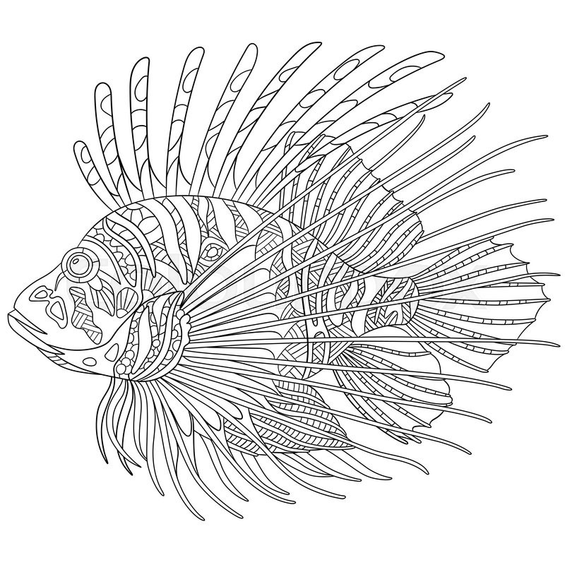Zentangle Stylized Cartoon Zebrafish Lionfishpterois