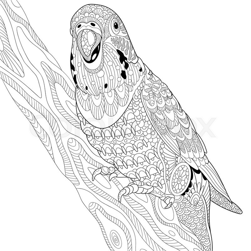 Zentangle Stylized Cartoon Budgie Parrot Sitting On Tree