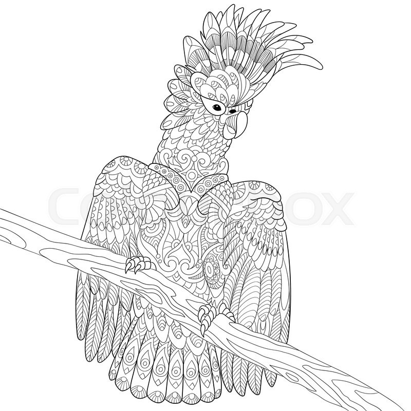 Zentangle Stylized Cartoon Cockatoo Parrot And Wooden Tree