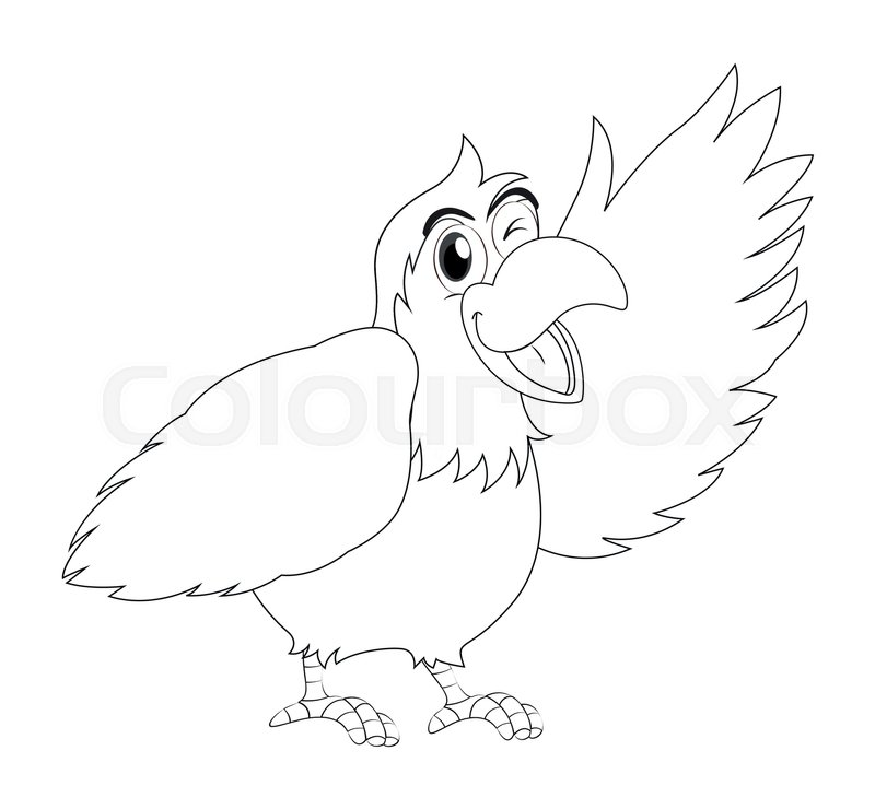 Animal Outline For Parrot Bird Stock Vector Colourbox