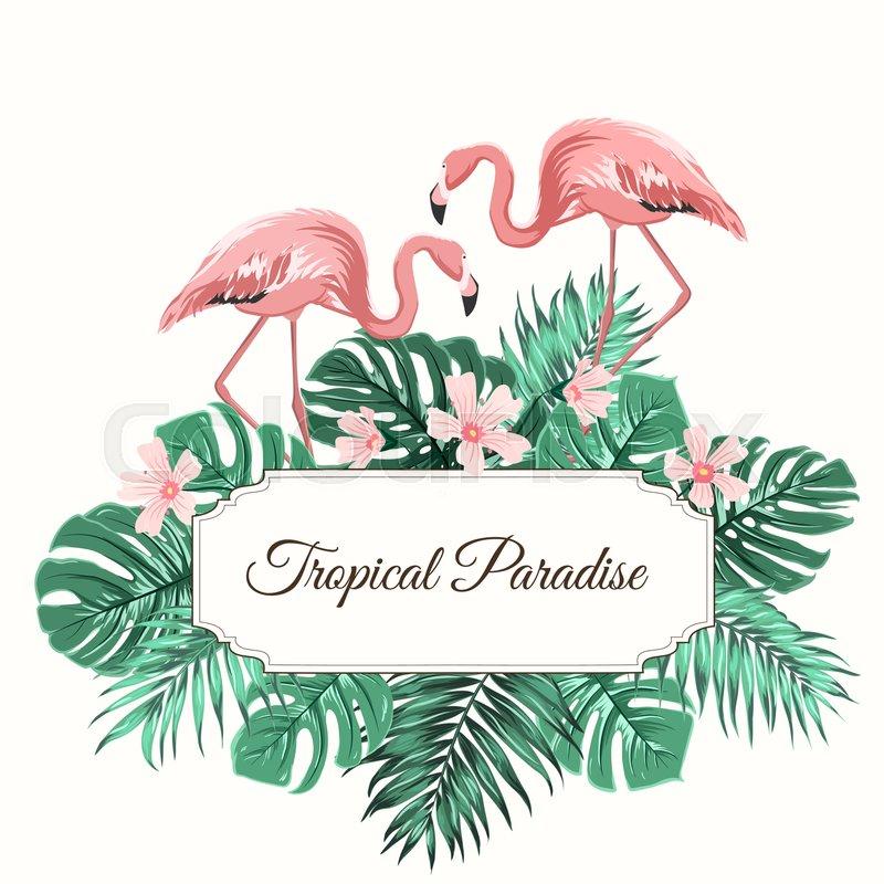 Tropical Paradise Composition Rectangular Border Frame