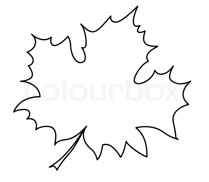 Silhouette Of The Maple Leaf On White Background Stock