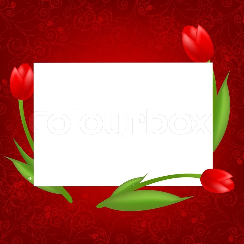 3 Tulips With Blank Valentines Day Card Vector