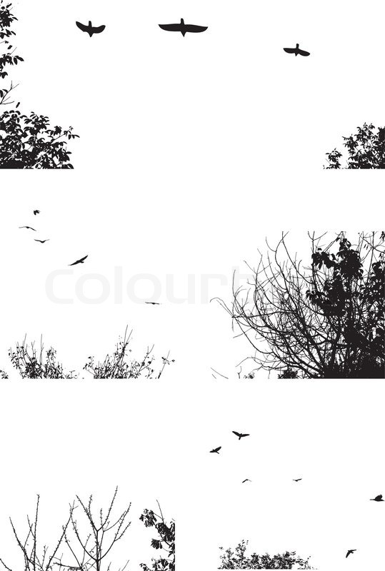 Black Silhouettes Of Trees And Flying Birds Isolated On