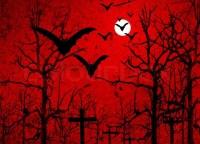 halloween bats background