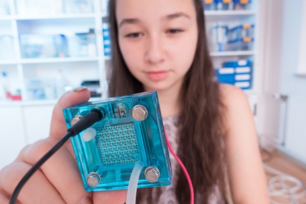 12 Award Winning Science Projects for 10th Graders ...
