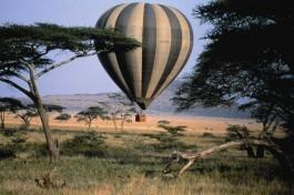 Hot air balloon ride