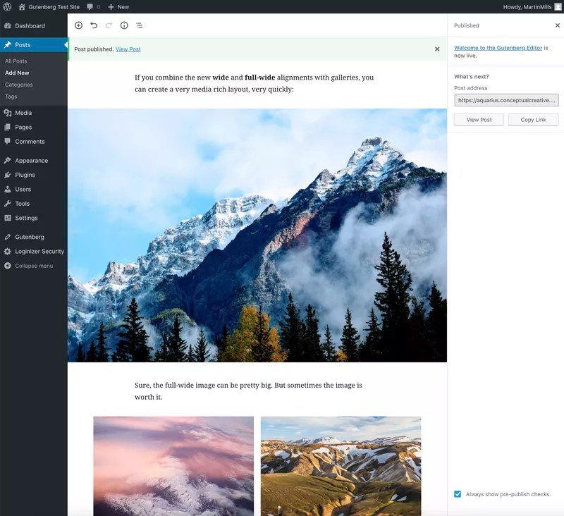 With Gutenberg Blocks You Will Have Increased Functionality When Editing.