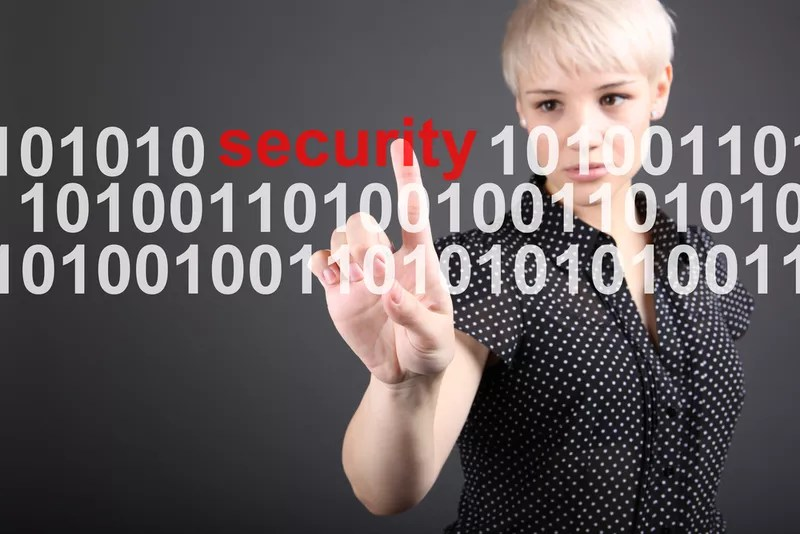 Are WordPress Websites Secure? Lets take a look.