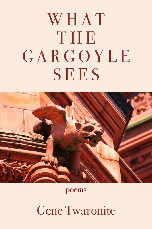 What the Gargoyle Sees
