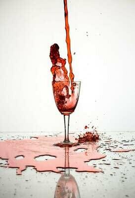 Essentials of Wine
