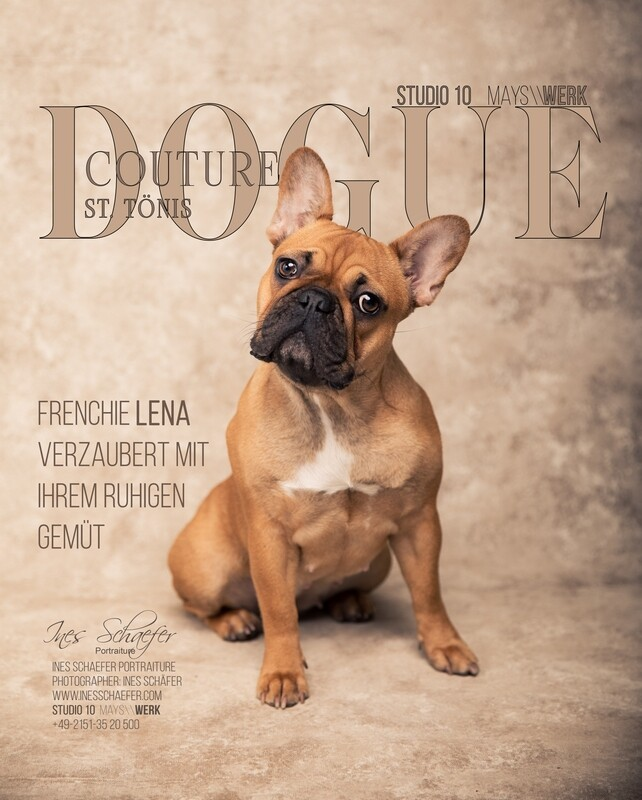 DOGUE COUTURE St. Tönis