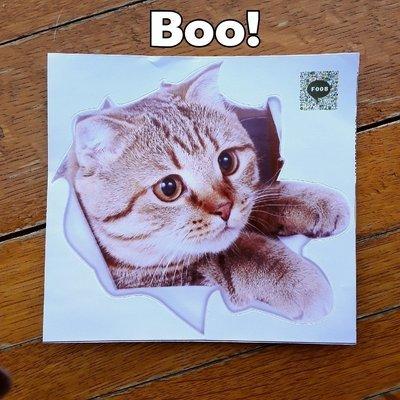 Boo! Decal (F008)