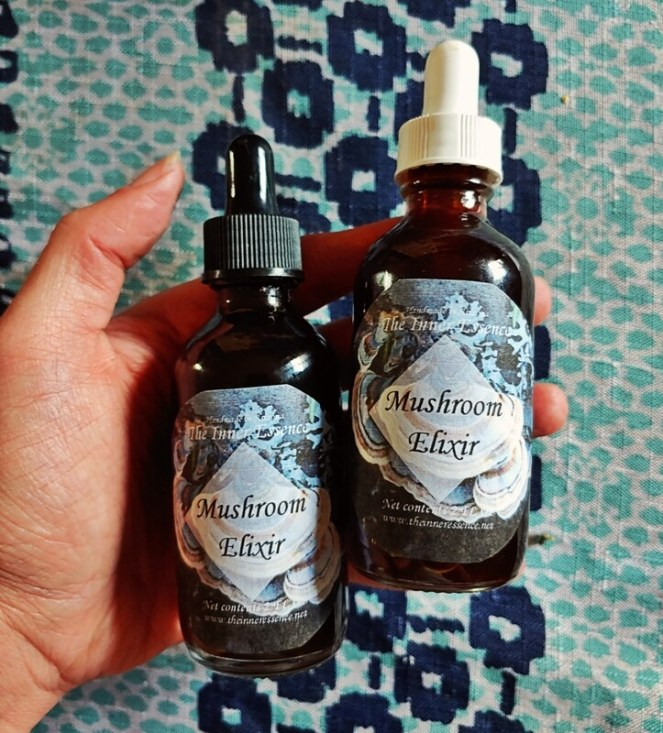 Mushroom Elixir