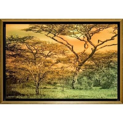 Matical Africa -- Jean Burnett