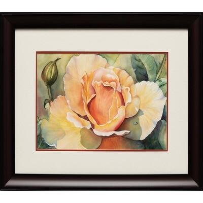 Peace Rose -- Sandi McGuire